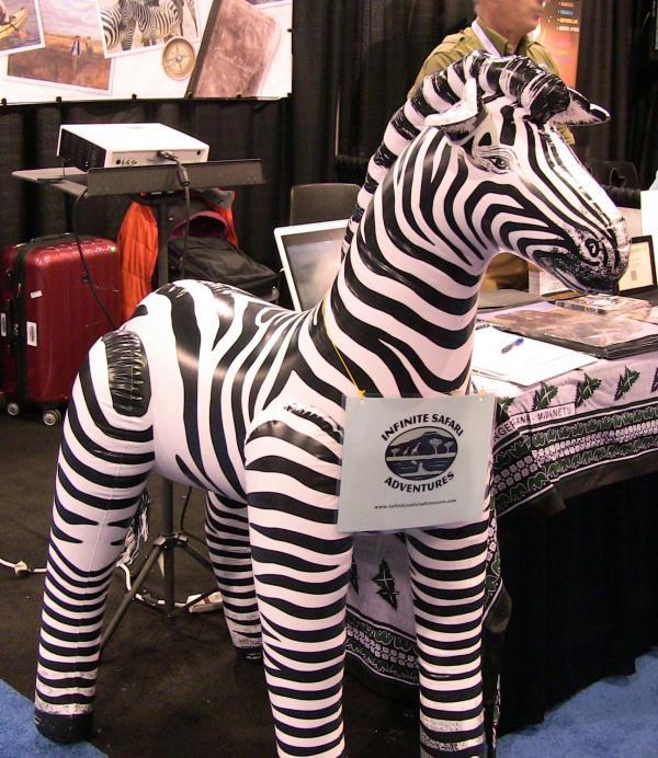 zebra www.theGlobalDiva.com